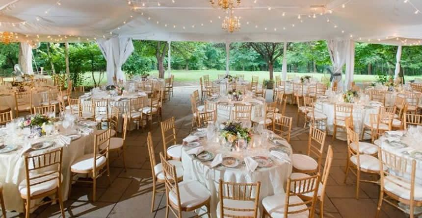 Wedding Chairs For Rent Cheap